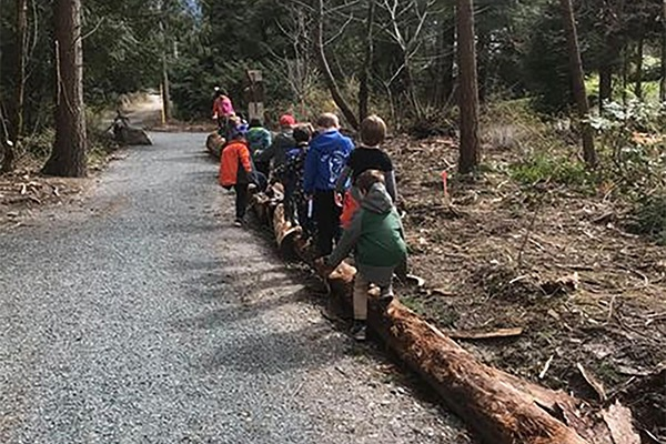 Grade 1 tree planting